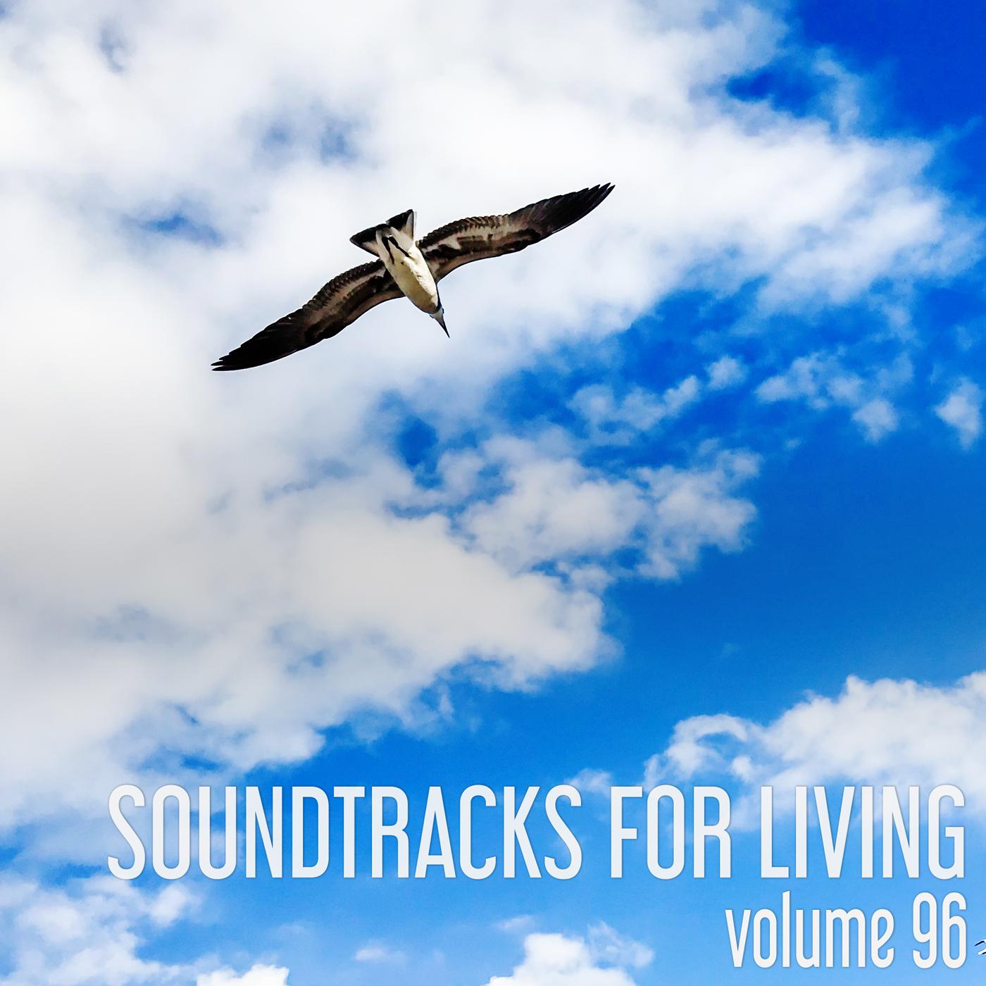 SFL - Volume 96