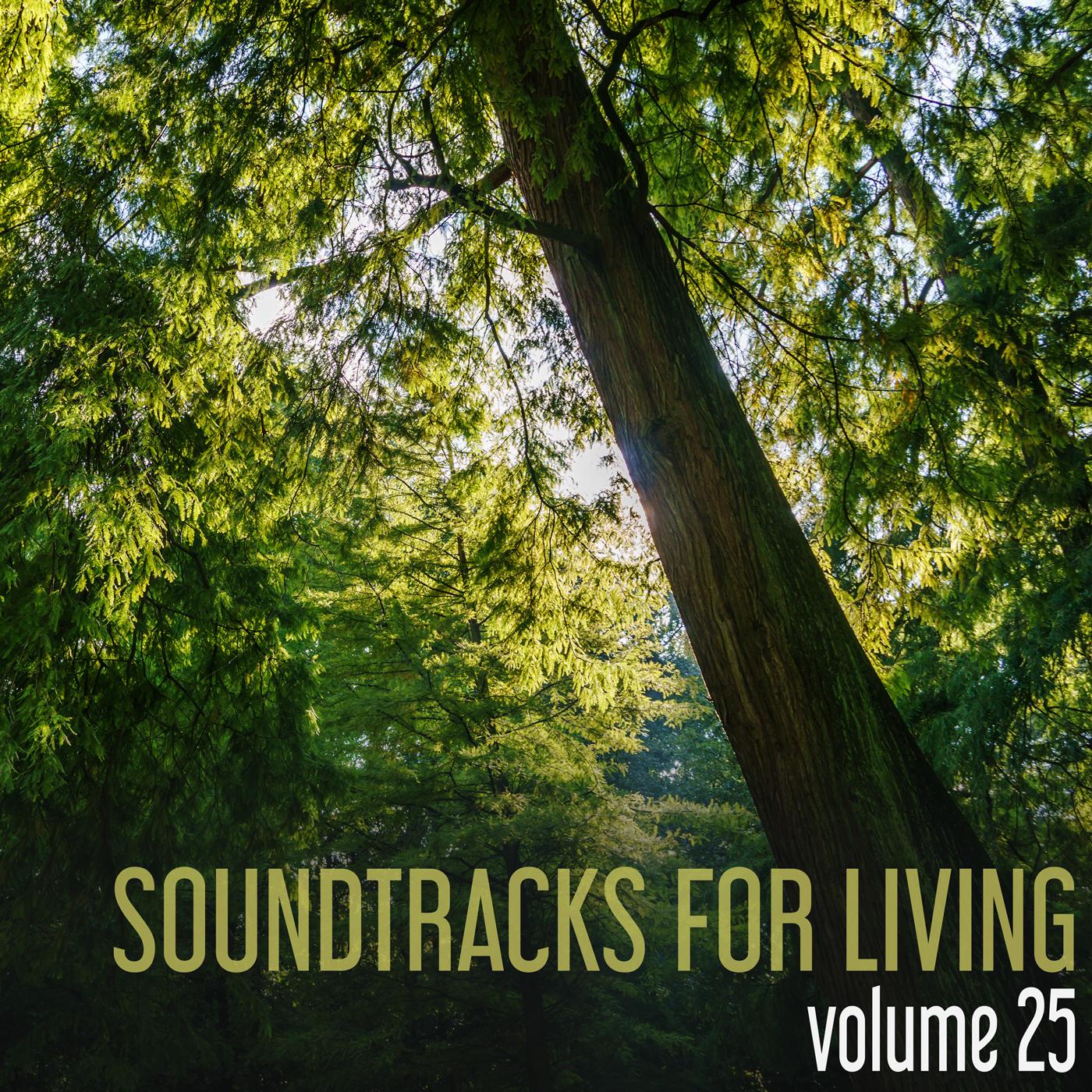 SFL - Volume 25