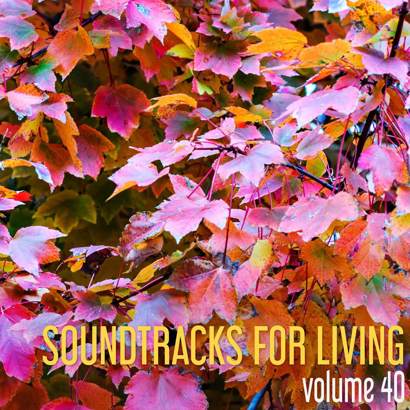SFL - Volume 40