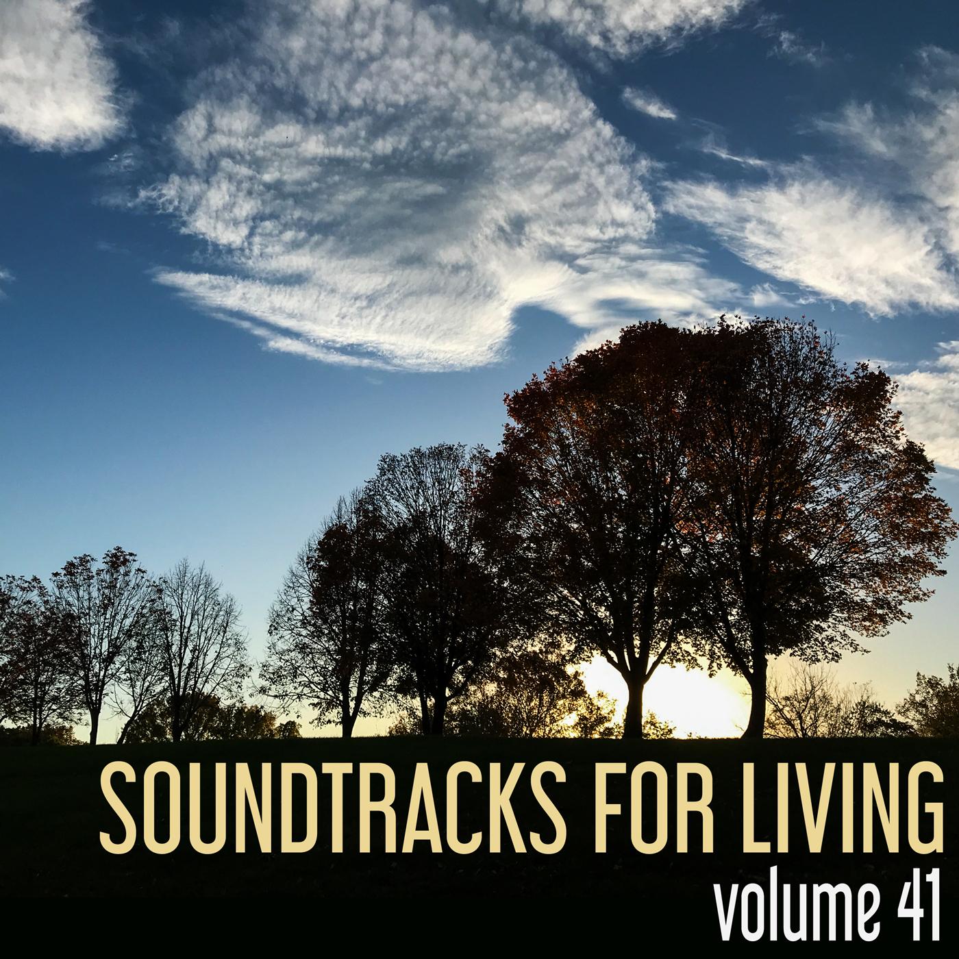 SFL - Volume 41