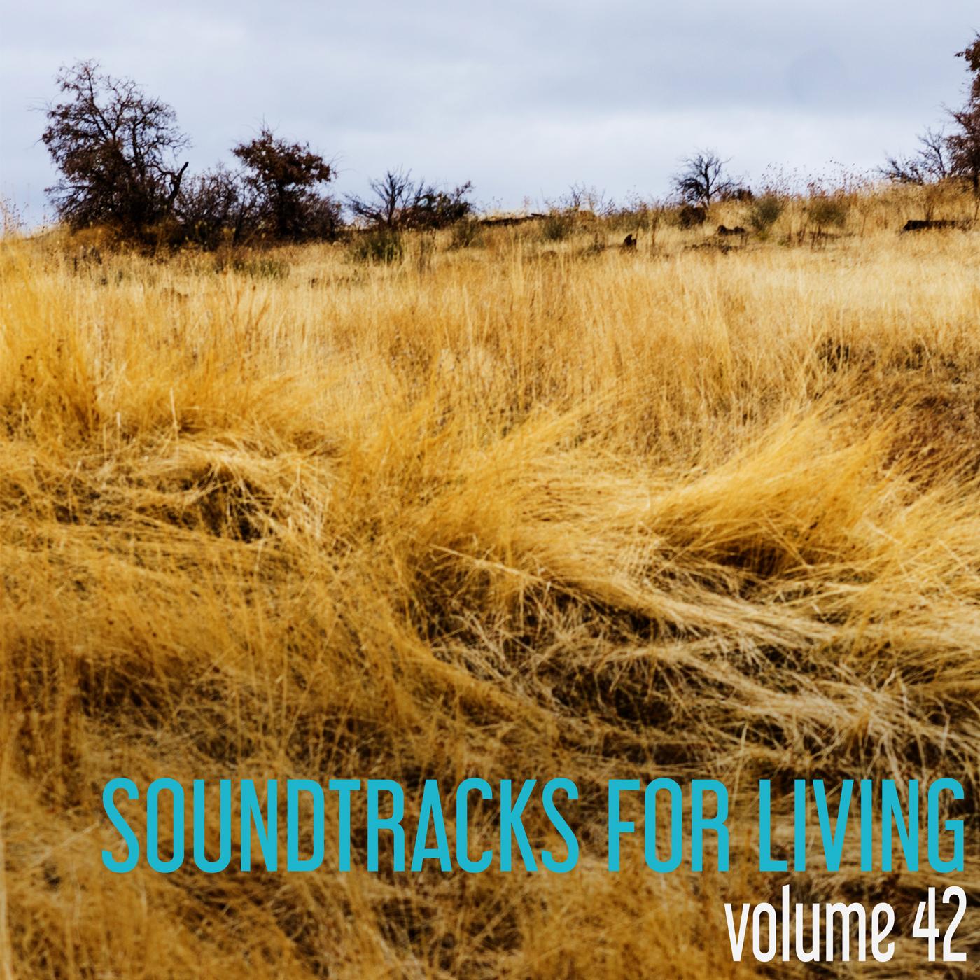 SFL - Volume 42 - Trevor Matthews