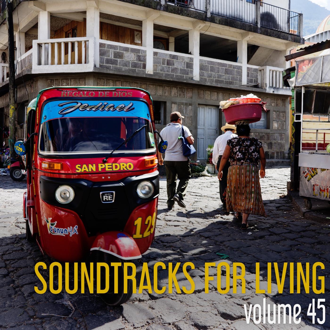 SFL - Volume 45