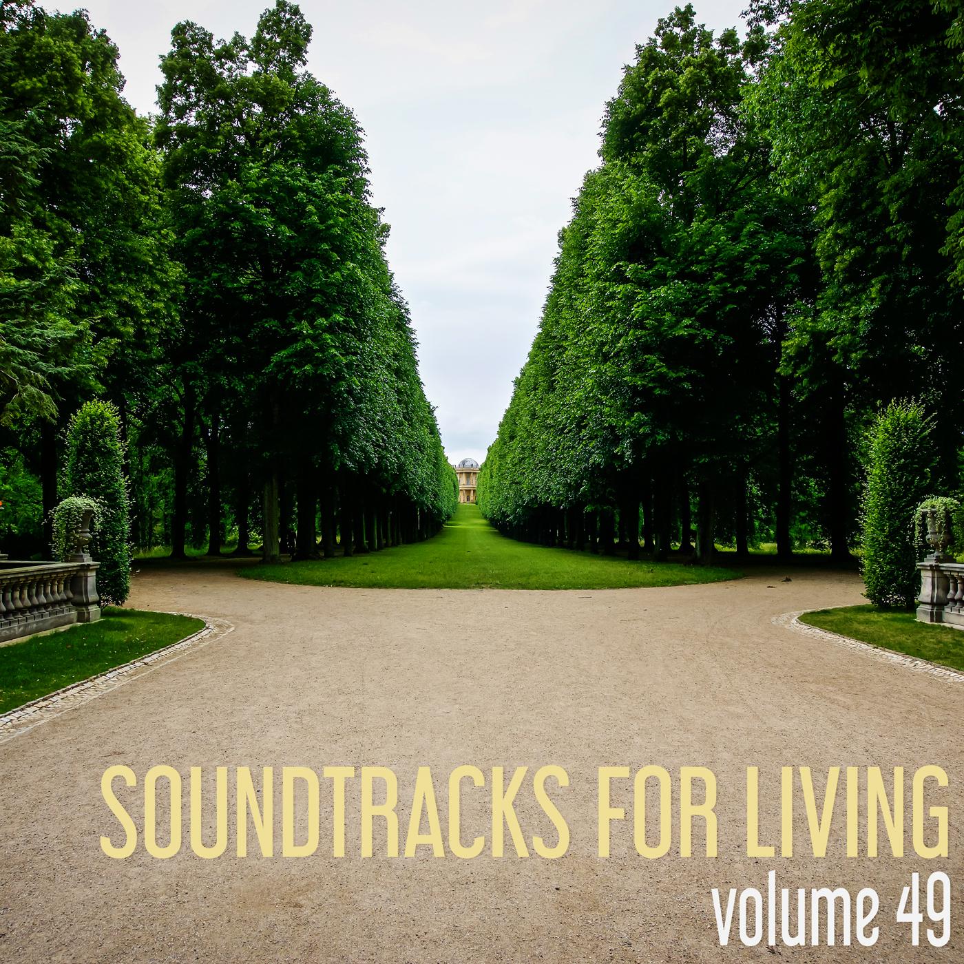 SFL - Volume 49