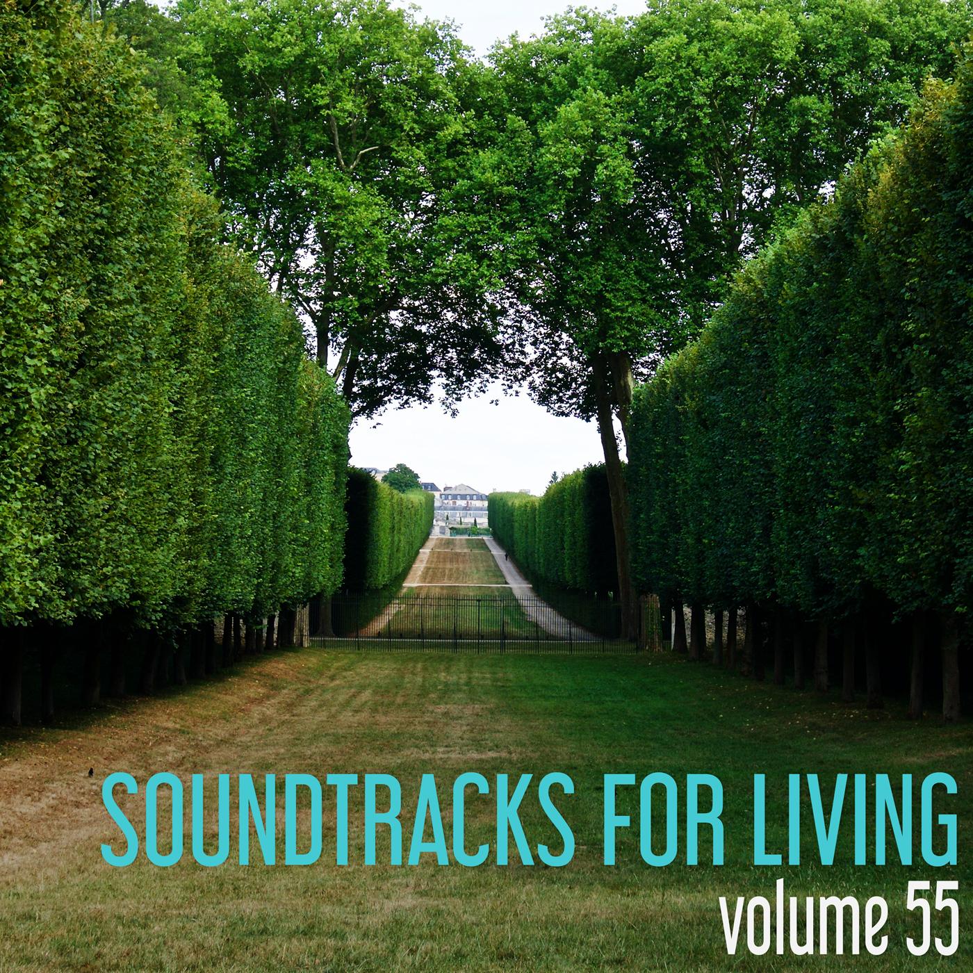 SFL - Volume 55