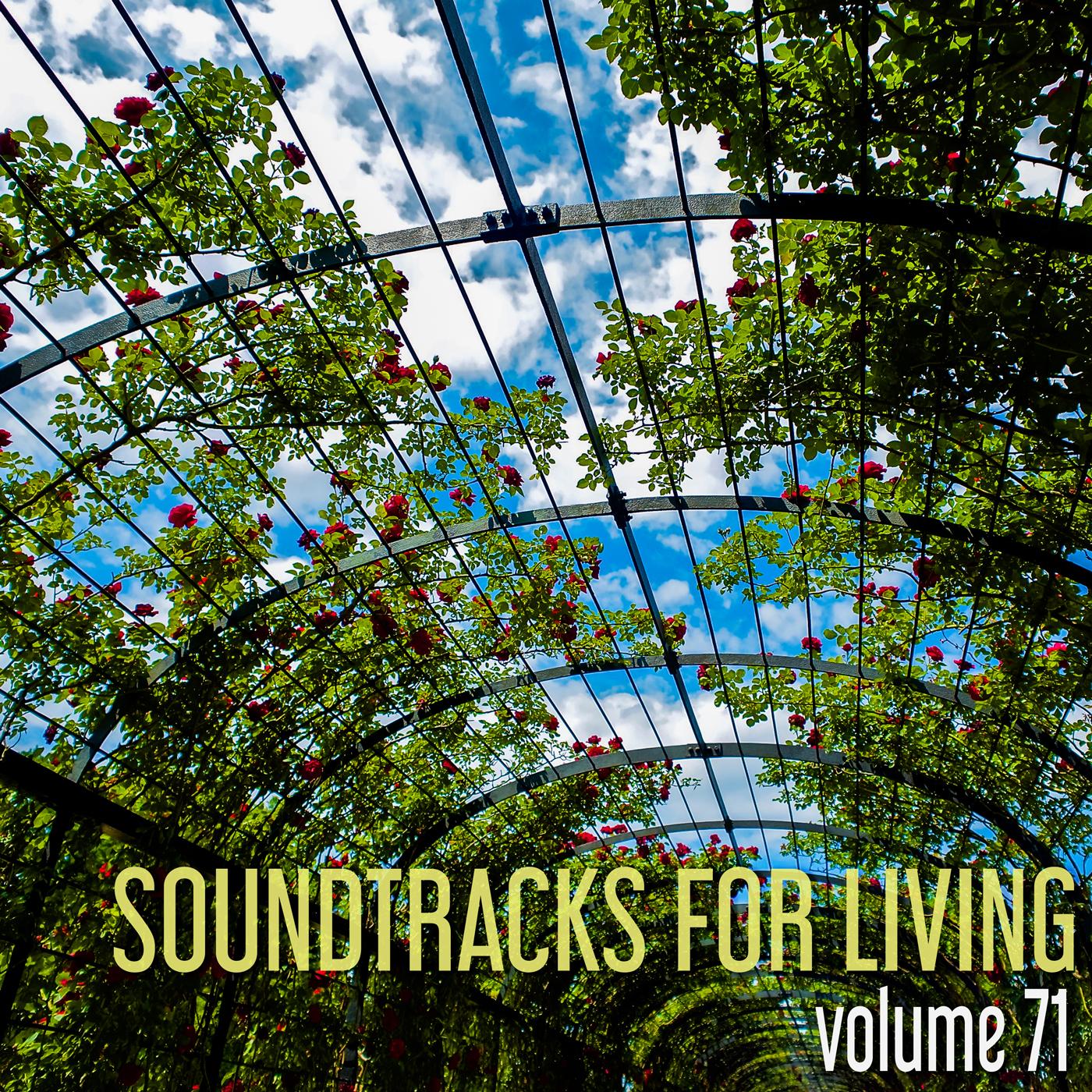 SFL - Vol. 71 - Dan Strickland
