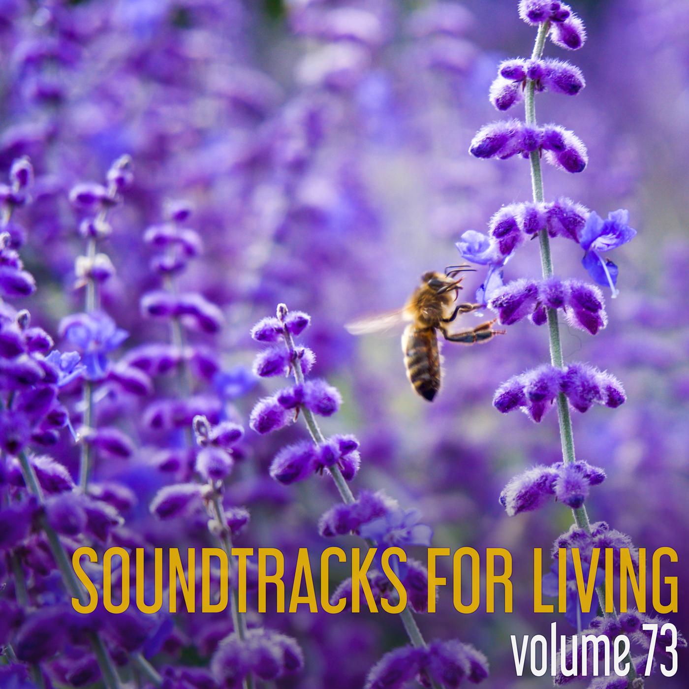 SFL - Volume 73