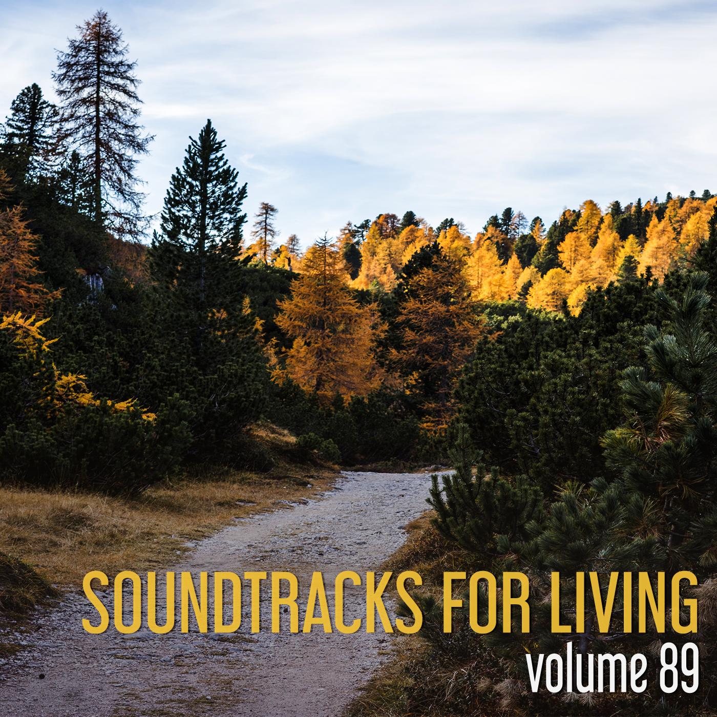 SFL- Volume 89 - Steve Eddins