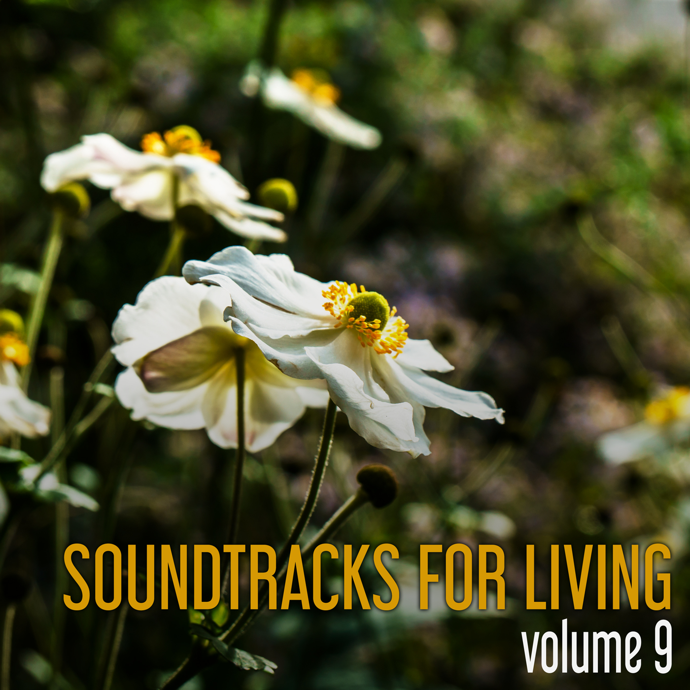 SFL - Volume 9